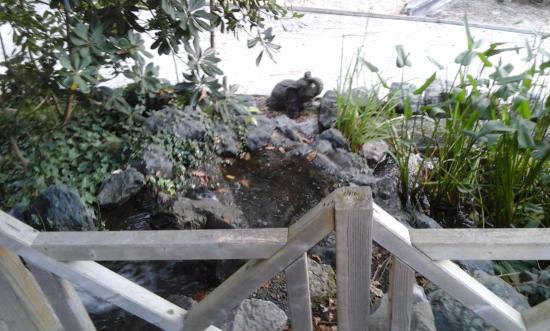 Nature et Océan : Petit détail du jardin