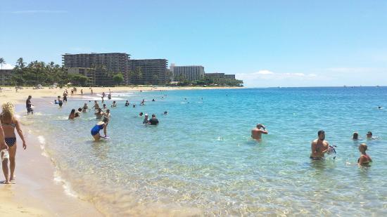 Hotels Near Wailea Beach Marriott Maui