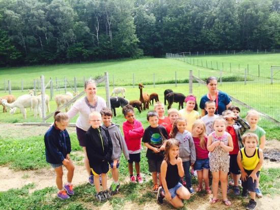 Salem, estado de Nueva York: Alpacas at Breezy Hill Ranch