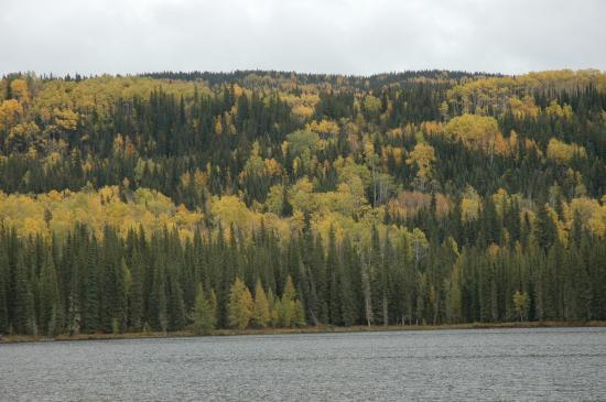 William A. Switzer Provincial Park: Gregg Lake