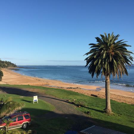 Cable Bay, Yeni Zelanda: Such a glorious spot!