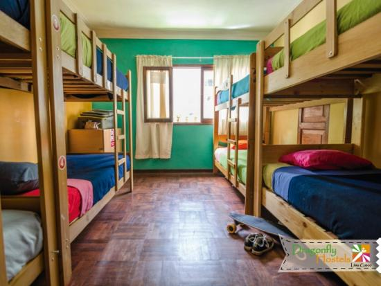 Dragonfly Hostels: Spacious dorms
