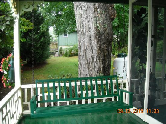 The Tumble Inn: Porch swing on pleasant porch/ancient maple tree