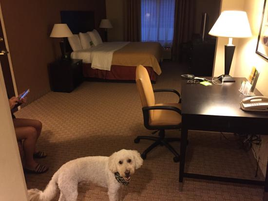 La Quinta Inn & Suites Dalton: Nice big room!