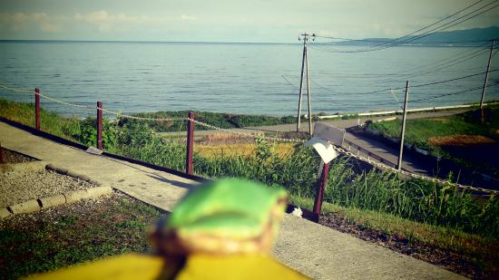 Sado Seaside Villa: テラスから見る海と蛙