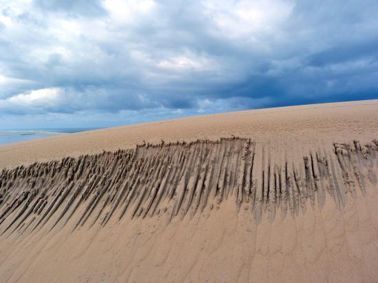 dune du pilat picture of dune du pilat la teste de buch. Black Bedroom Furniture Sets. Home Design Ideas