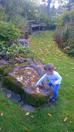 Stockton Bury Gardens照片