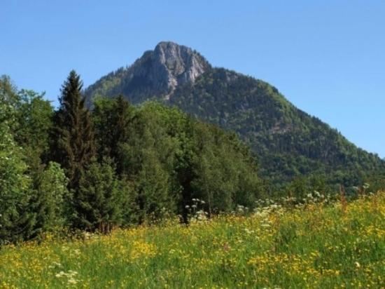 Hintersee, Austria: Blick auf den Schober