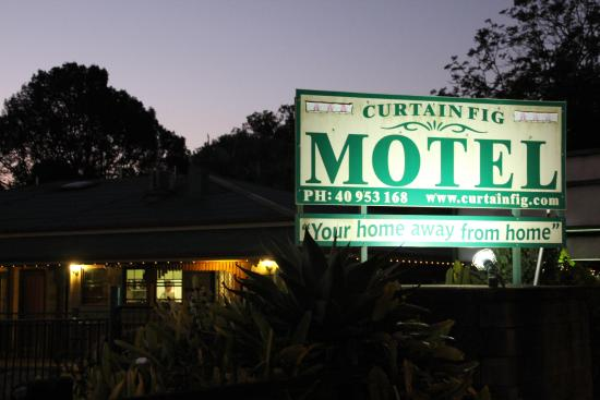 Curtain Fig Motel: Motel
