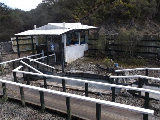 Kaikohe, New Zealand: Overview