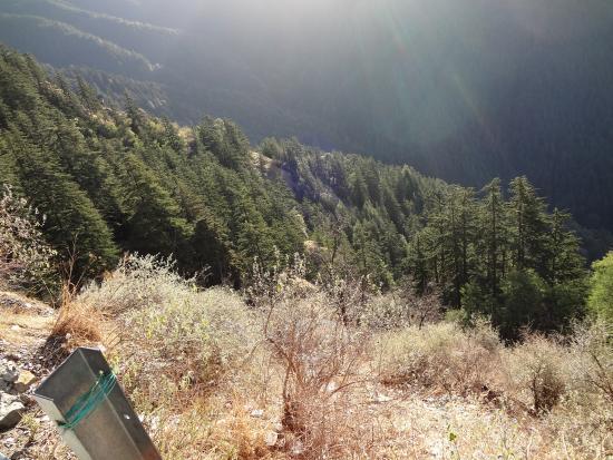 Shimla, India: Spot