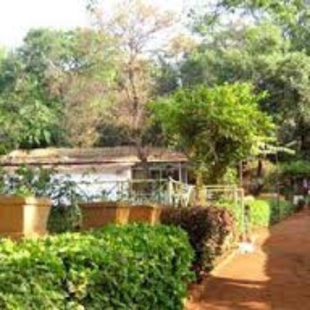 Jai Hill Resort : resort pic