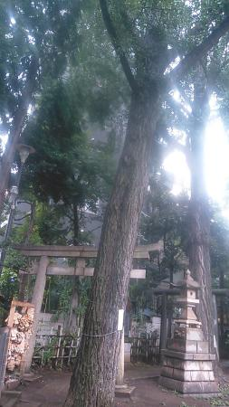Kisyou Shrine