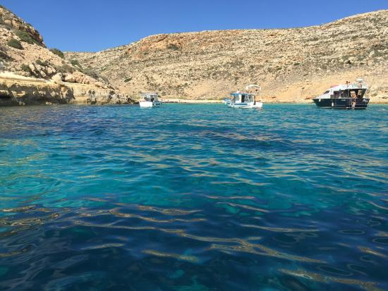 Turtle Harbour Lampedusa