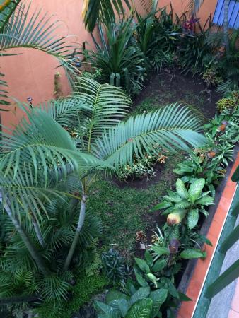 Posada Juma Ocag: 2nd floor view of garden courtyard
