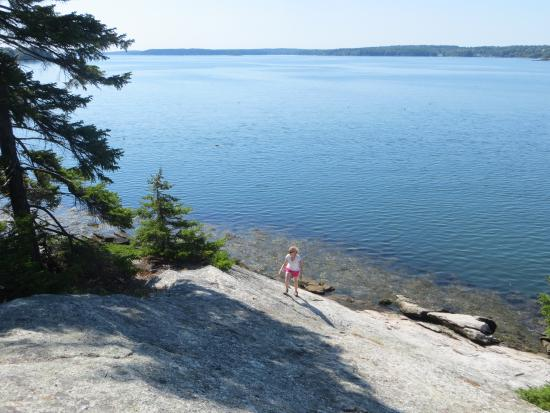 Boothbay Region Land Trust: A little off the trail