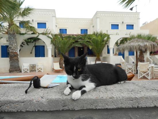 Hotel Dilino: angoli di kamari