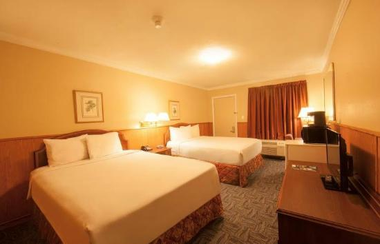 Sutton Park Inn: Renovated Rooms
