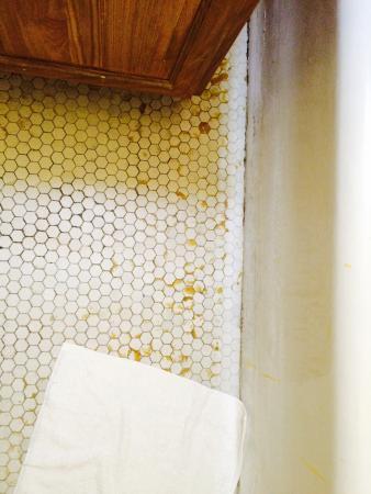 โรงแรมเทย์เลอร์: bathroom