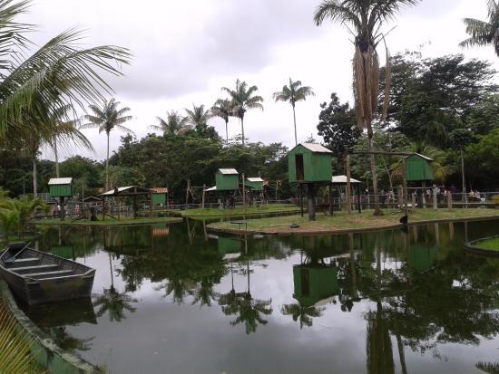 CIGS Zoo