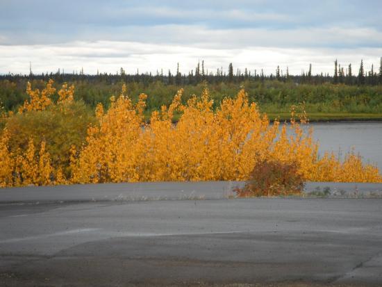 Inuvik, Canada: Mackenzie River