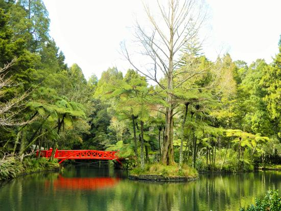 New Plymouth, Nieuw-Zeeland: bridge