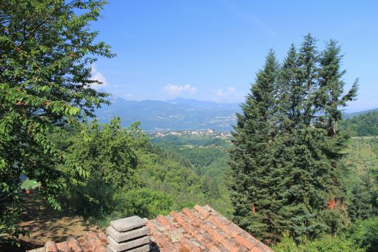Tiglio Basso, Italia: View from the property