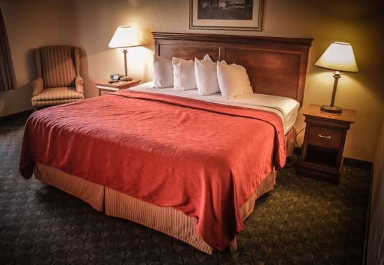 Red Roof Inn and Suites: Bed