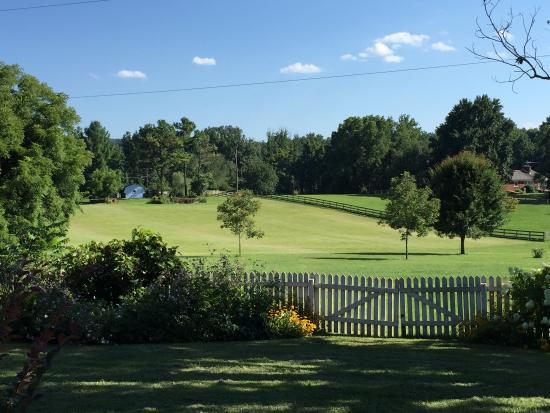 Inn at Westwood Farm : The backyard as seen from the patio