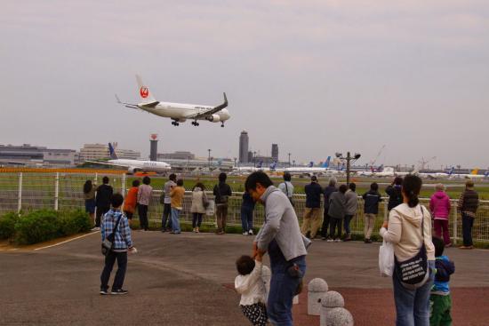 Sora no Eki Sakura Hall: 飛行機の離着陸