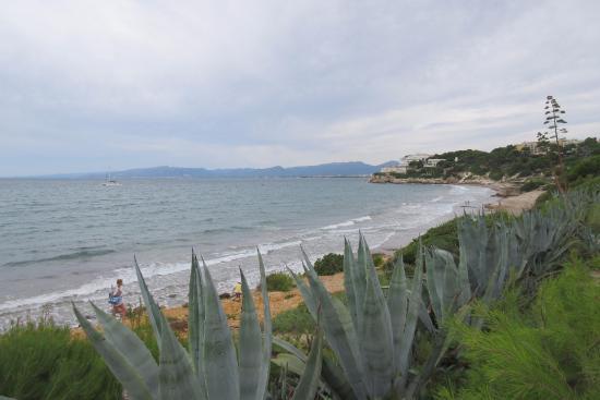 Llarga Beach: Побережье