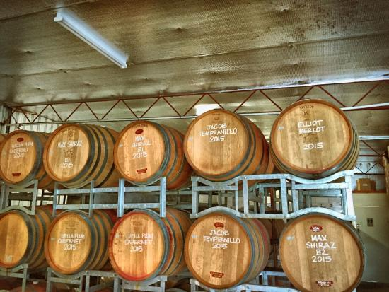 Wine Discovery Tours: Barrels at Tobin's winery