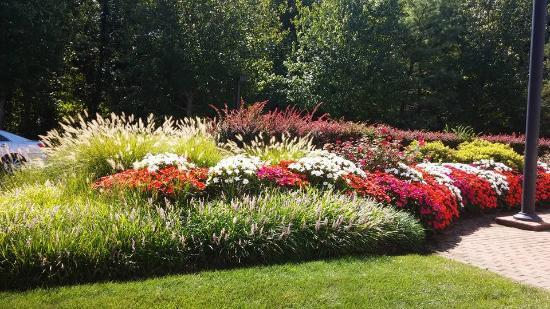 Dolce Basking Ridge: Gardens by main entrance