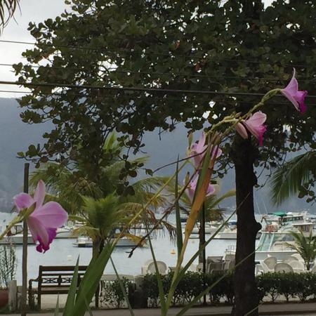 Itapemar Hotel: Vista desde jardines con orquídeas hacia la playa