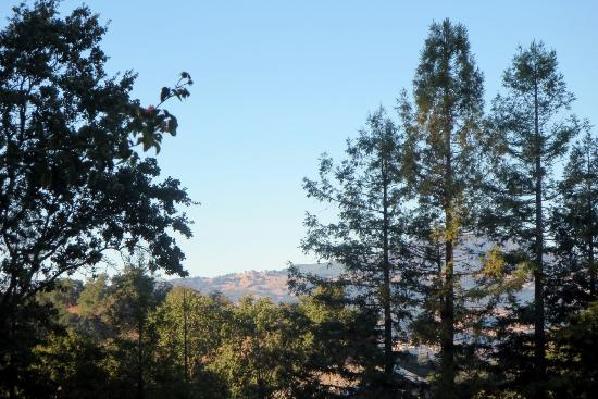 Belle de Jour Inn: View of Sonoma hills in the distance