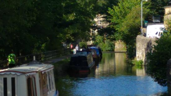 The Royal Shepherd: The Canal outside our door