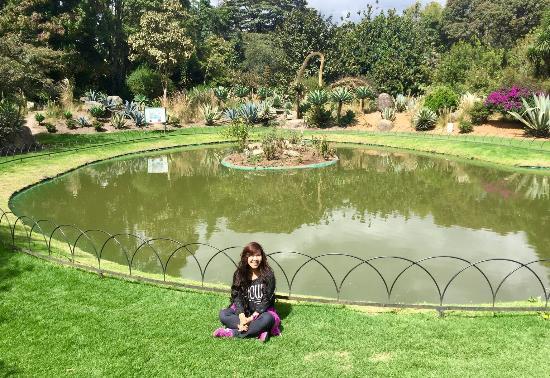 Jardin Botanico De Bogota Jose Celestino Mutis: Beautiful And Relaxing Jardin  Botanico De Bogota