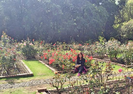 Beautiful and relaxing jardin botanico de bogota picture for Jardin botanico bogota