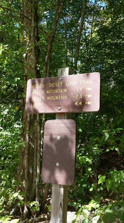 Thornton, NH: Trail head
