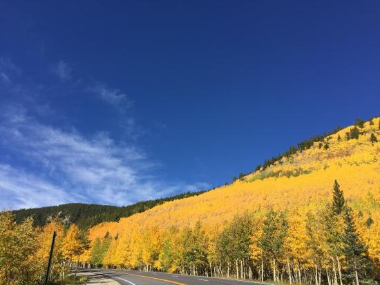 Monarch Pass Fall color