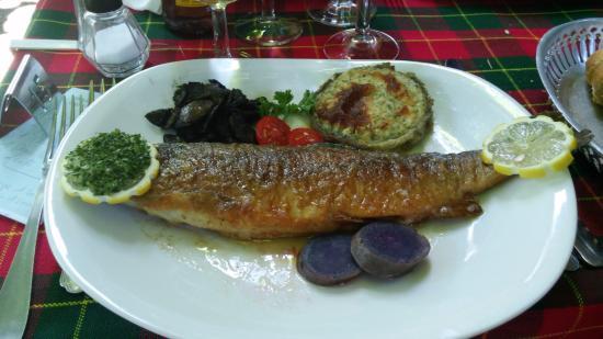 L'hostellerie de l'Eveche: Freshly caught trout