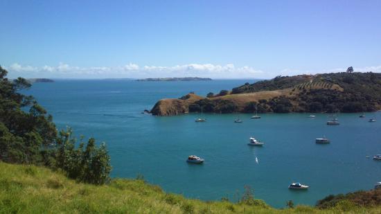Pulau Waiheke, Selandia Baru: ... more beautiful views ...