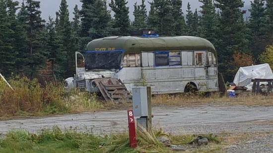 McKinley RV Park and Campground: interesting sites