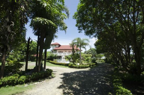 Urbiz Garden