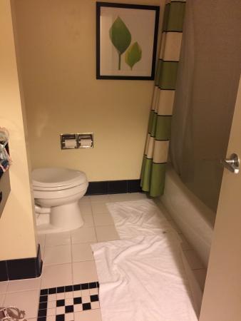 Fairfield Inn & Suites Houston Conroe Near The Woodlands®: photo1.jpg