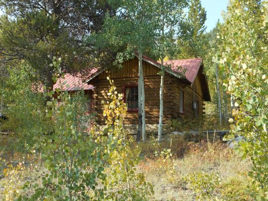 Twin Lakes, CO: Tall Pines cabin at Mount Elbert Lodge