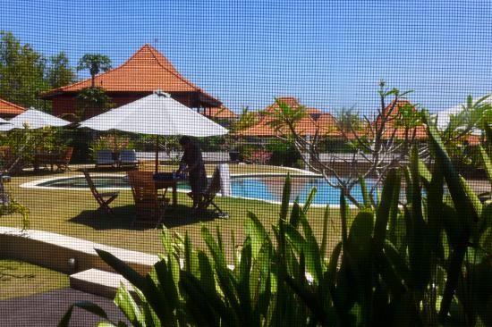 Three Monkeys Villas: Pool view