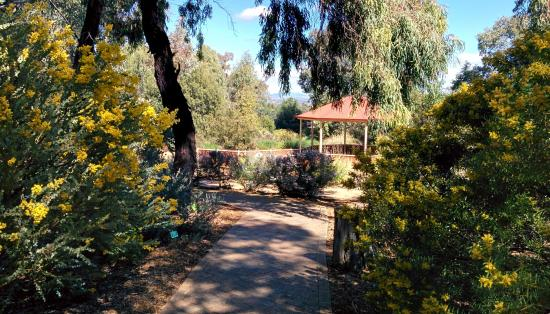 Tamworth Botanical Gardens