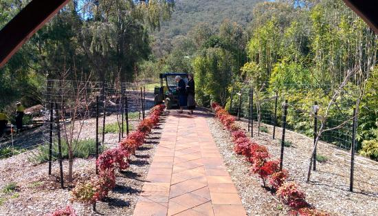 Beautiful Tamworth Botanical Gardens: New Section Overlooking Reinforest