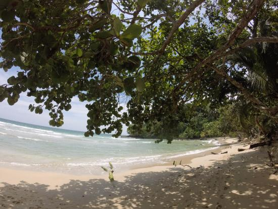 Red Frog Beach Island Resort Certified For Its: Redfrog, Beautiful Beach With Plenty Of Shade